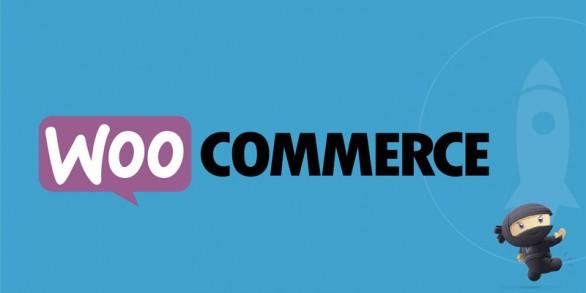 چرا ووکامرس بهترین افزونه فروشگاه ساز است ؟