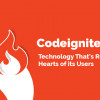 CodeIgniter [کدایگنایتر] چیست